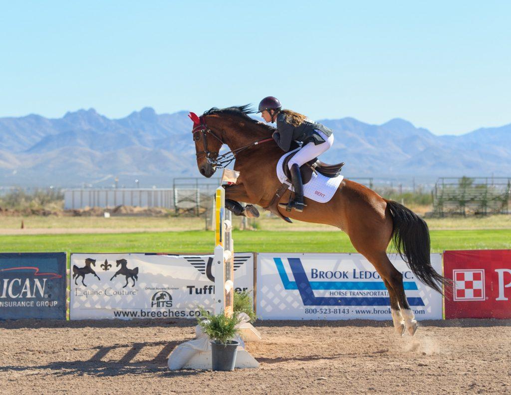 Horse racing and jumping