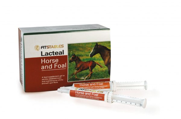 Fitstables Horse and Foal Lacteal Paste