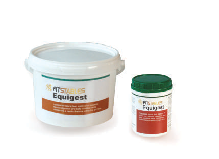 Equine Supplement